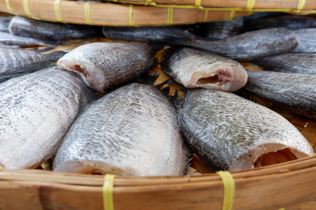 Snakeskin gourami Fish dried in market