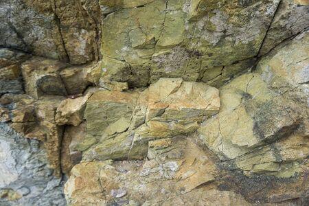 Close up of a sea rock texture 版權商用圖片