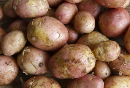 Potatoes background Stock Photo
