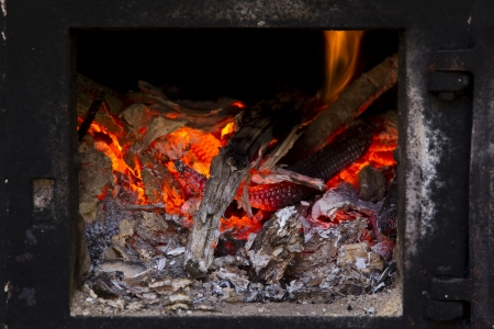 Fire and ember burning in the stove photo