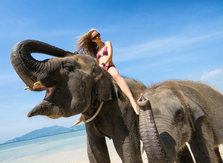 young girl bath: Woman and two elephant. Wide angle shoot. Thailand vacation. Focus on girl and big elephant head.