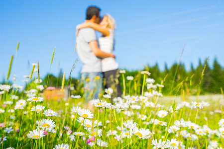 Couple kissing on the field with flowers. Selective focus: only  chamomiles on the front picture in focus.  Couple blured.