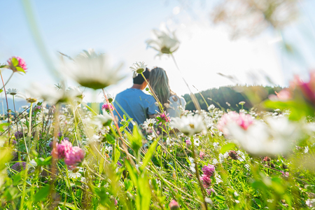 Couple sitting in the flowers field. Selective focus: on the few flowers in the middle. Flowers on the front of picture and couple are blured. Standard-Bild