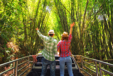 Couple of tourists in pickup ride in jungle. Back view.