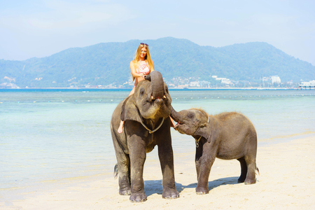 Smiling girl  playing  with elephants on the beach. Thailand vacation