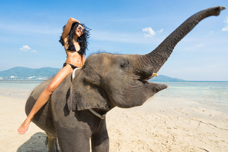 Smiling woman in bikini  on elephant on the beach. Tropical vacation. Reklamní fotografie