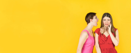 Two women whispering gossip or bad news. Isolated studio yellow background female model. Banner edition.