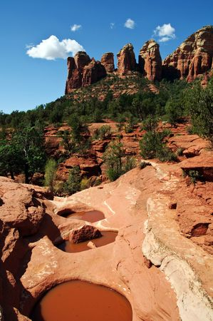coconino national forest: vibrant red rock nature landscape in sedona