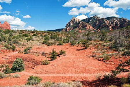 coconino national forest: scenic red stone landscape of sedona, in arizona Stock Photo