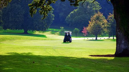 photo capture of golf cart in green field