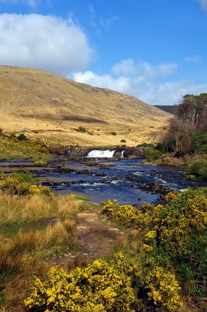 photo of vibrant scenic nature capture in the west of ireland Stock Photo - 5967528