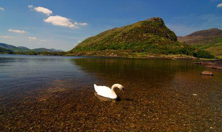 photo scenic landscape at ring of kerry, ireland Stock Photo - 5984099