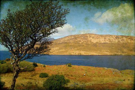 photo scenic grunge landscape of connemara in ireland Stock Photo - 6127254
