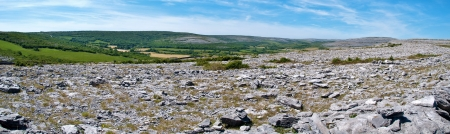 the burren national state park, county clare, ireland photo