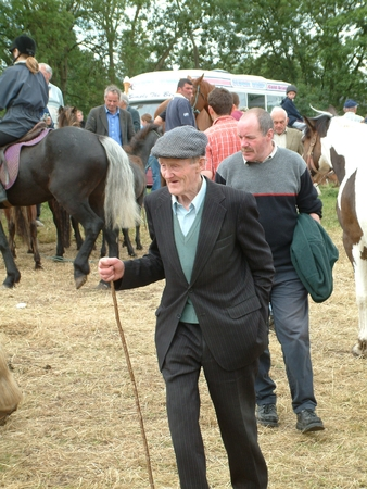oldest: Clare, IRELAND - June 23, 2016: Spancill Hill, Ireland. Spancil Hill  Horse Fair. Spancill Hill Fair, Irelands and Europes oldest historic horse fair, which occurs annually on 23 June.