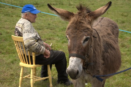 Clare, IRELAND - June 23, 2016: Spancill Hill, Ireland. Spancil Hill  Horse Fair. Spancill Hill Fair, Irelands and Europes oldest historic horse fair, which occurs annually on 23 June.