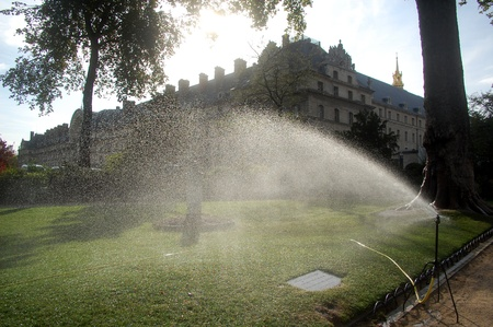 watering the lawn in the summer time