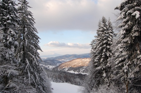 Winter landscape from the Carpathian mountains in Romania, the Prahova Valley