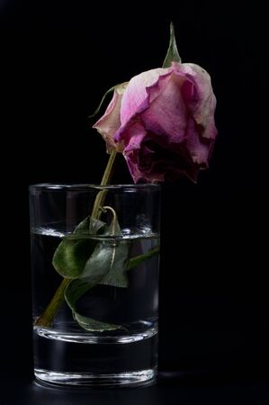 Water glass on black background