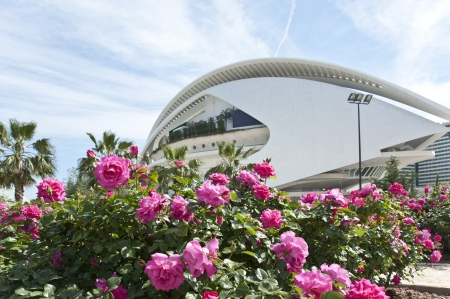 rundale: The garden in The city of Arts and Science in Valencia ,Spain