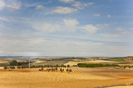 Fields in Spain between Valencia and Madrid  photo