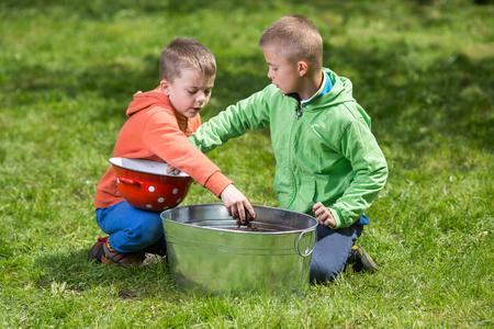 Brüder bereiten kleine Behälter vor, um Kartoffeln in zu wachsen. Familienwerte, gesundes Lebensmittel, Anheben und Heranwachsen des Konzeptfotos. Standard-Bild - 77464589