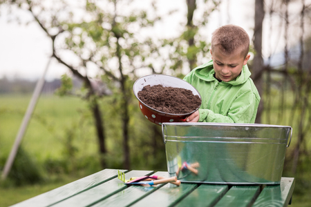 Brothers are prepairing small containers to grow potatoes in. Family values, healthy food, raising and growing up concept photo. Standard-Bild