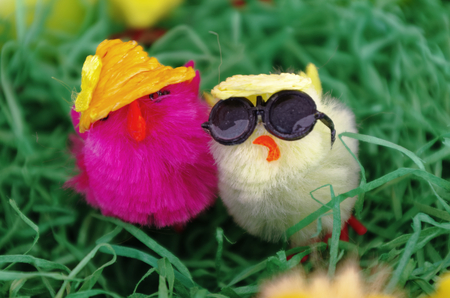 Easter hats with hat and sun glasses in pink and yellow in closeup