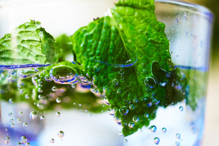 Glass with water bubbles and mint Standard-Bild - 124811602