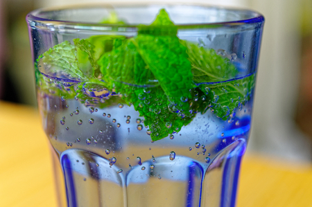 Glass with water bubbles and mint Standard-Bild - 124811604