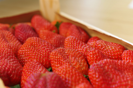 Strawberries freshly harvested in a wooden box, beautiful red and fresh Standard-Bild - 124811659