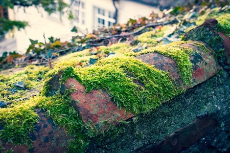 Brick of an old roof with green moss and old houses in the background