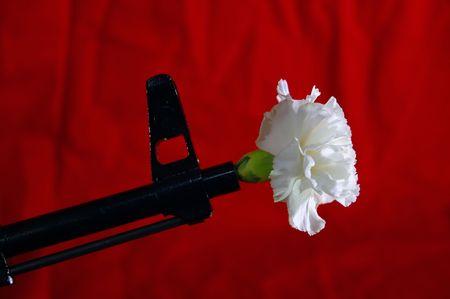Gun and flower