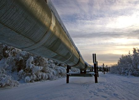 The Trans-Alaska oil pipeline in the winter photo