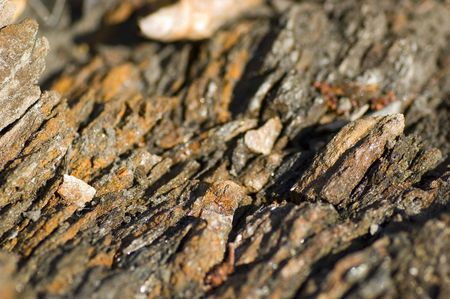iron oxide: Broken rocks with lichen and iron oxidation (shallow depth of field) Stock Photo