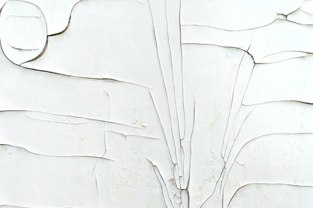 Cracked layer of white paint on the wall.