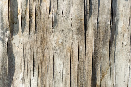 Old wooden texture, weathered obsolete rough textured. old plywood background. Reklamní fotografie
