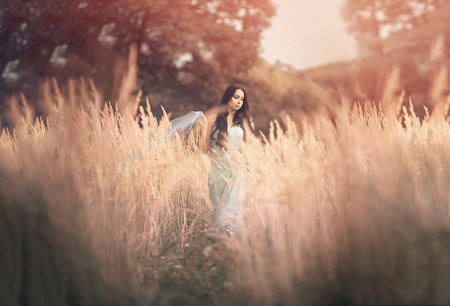 wood nymph: Beautiful and romantic woman in fairytale, wood nymph among tall grass and rays of sun. Outdoor Stock Photo