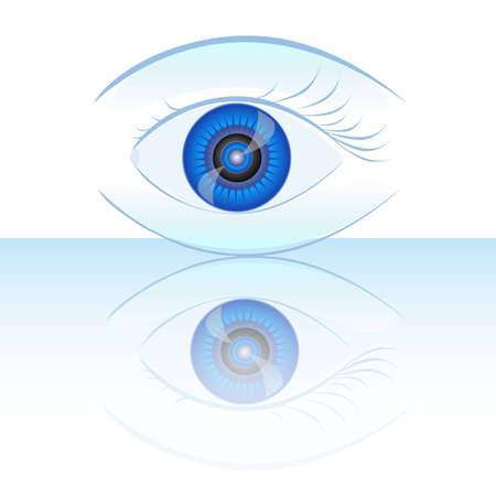 choroid: blue human eye.vector illustration.