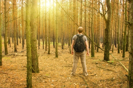 Young man standing in the forest Stock Photo - 15844686