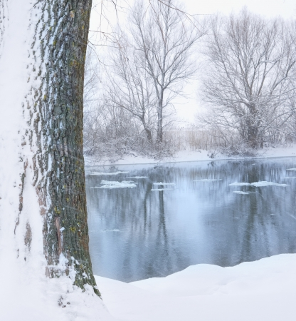 winter wonderland: river and tree covered with snow Stock Photo