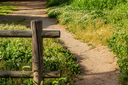 A wooden fence opens up giving space to a path towards the green of nature. Stock Photo