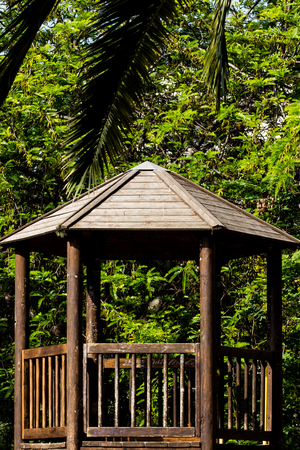 An old wooden hut, soiled by childrens writings, inside a park surrounded by green trees and leaves.
