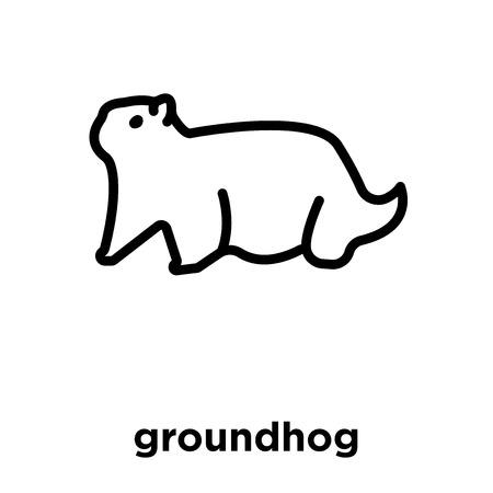 groundhog icon isolated on white background, vector illustration Illustration