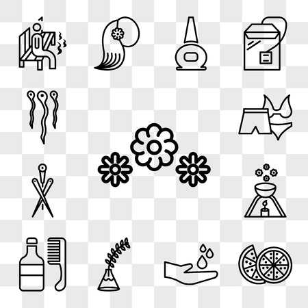 Set Of 13 transparent icons such as 3 flowers, Couple of half oranges, Spa, Fern plant on vase, hair medicine and comb, scented candle, Acupuncture needles, web ui editable icon pack, transparency set Illustration