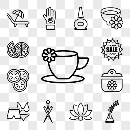 Set Of 13 transparent icons such as cup with a flower, Fern plant on vase, Relaxation, Acupuncture needles, Female bikini and male short for spa, spa ointment, web ui editable icon pack, transparency