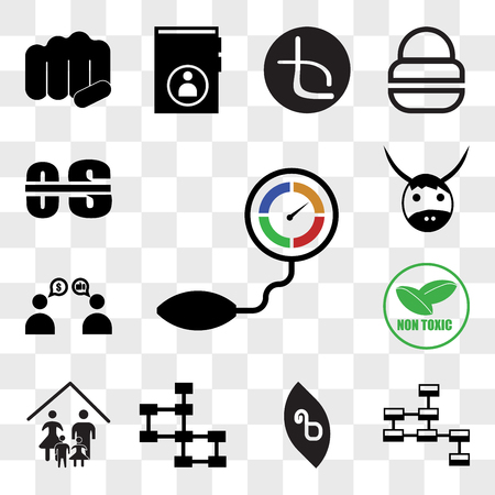 Ensemble de 13 icônes transparentes telles que capteur de pression, schéma de base de données, bêta, notre famille, non toxique, parrainage, yak, pack d'icônes modifiable de l'interface utilisateur Web, jeu de transparence Vecteurs