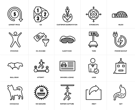 Set Of 20 icons such as gut, irect, motion capture, 100 genuine, chihuahua, igloo, tare, drivers license, bull bear, oil change, customer segmentation, web UI editable icon pack, pixel perfect Stock Illustratie