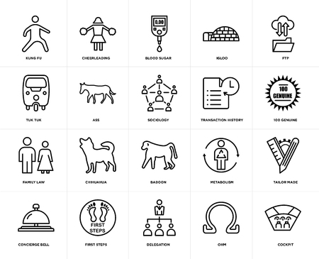 Ensemble de 20 icônes modifiables simples telles que cockpit, 100 authentiques, ftp, igloo, concierge bell, cheerleading, métabolisme, tuk tuk, pack d'icônes d'interface utilisateur Web, pixel perfect Vecteurs