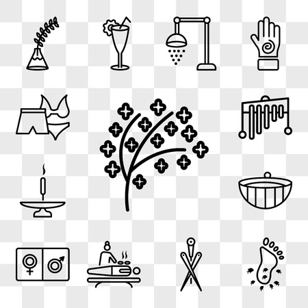 Set Of 13 transparent icons such as tree twigs with leaf, Feet couple, Acupuncture needles, body spa and massage, male female, Spa wooden bowl, web ui editable icon pack, transparency